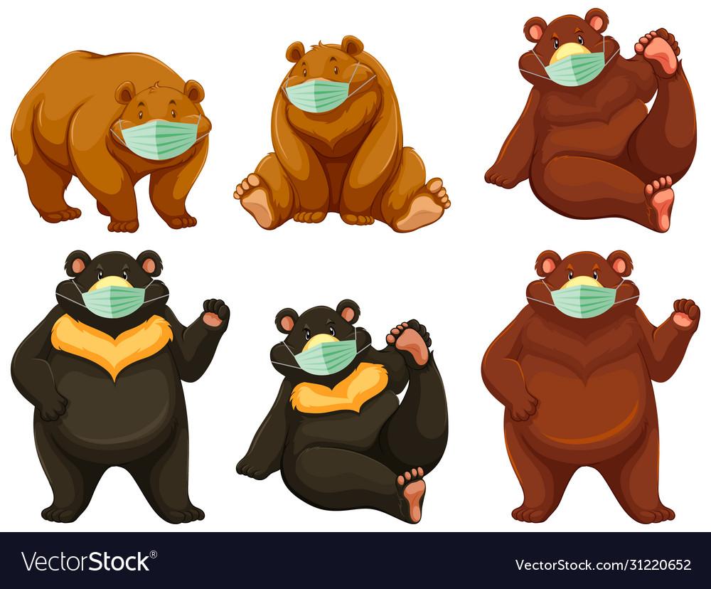 Wild bear cartoon charater wearing mask