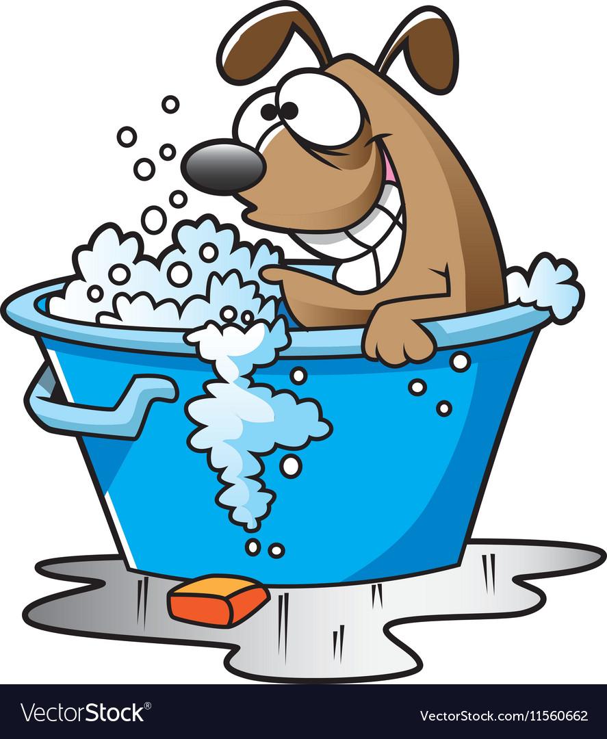 Dogbath