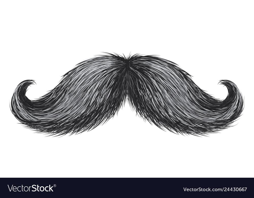 Hand drawn realistic vintage retro mustache