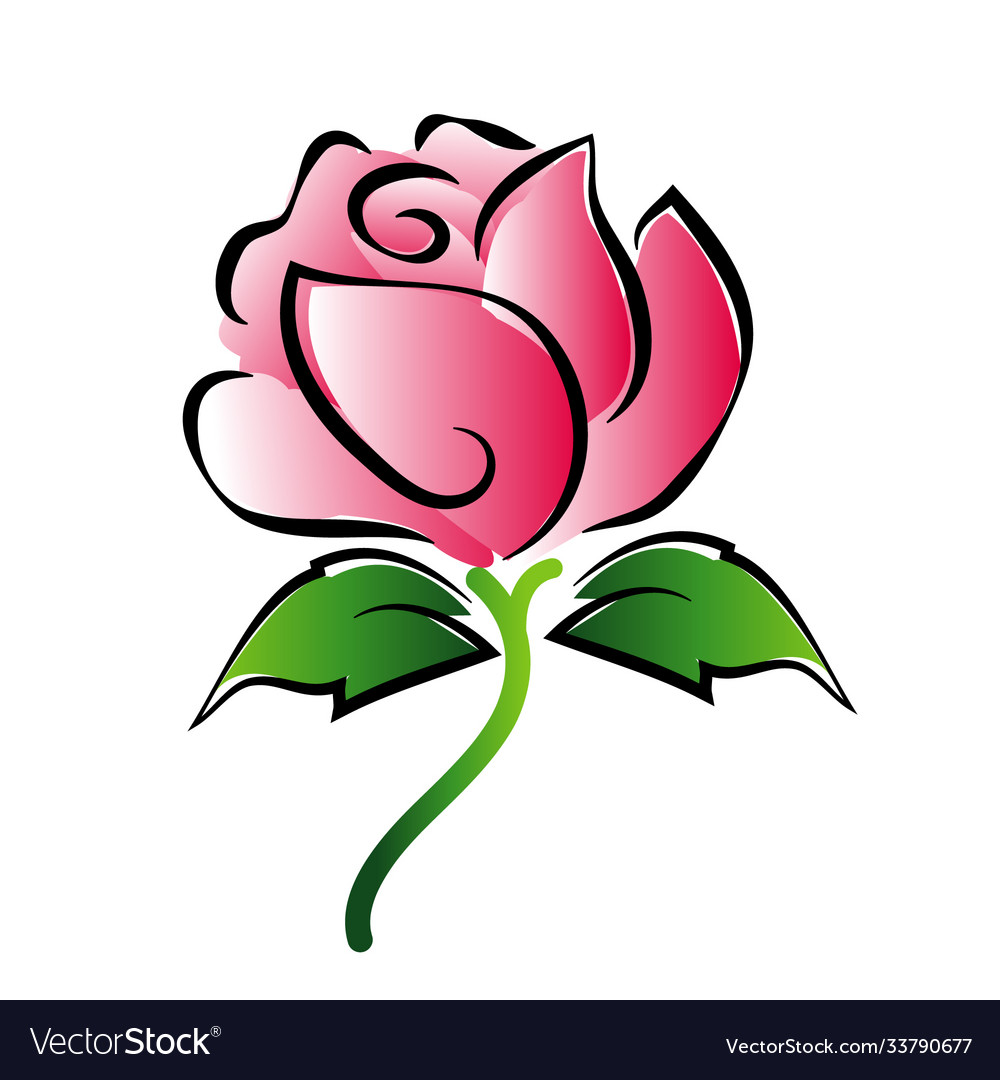 Red rose painting on white background vector