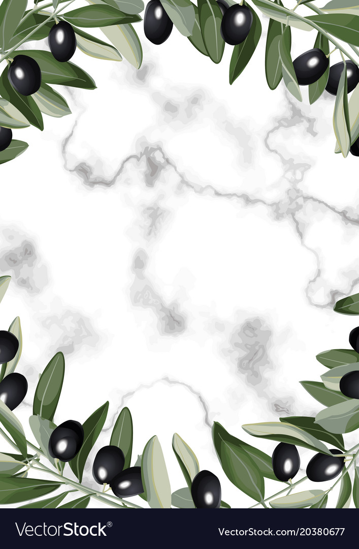 Template frame from olive branches