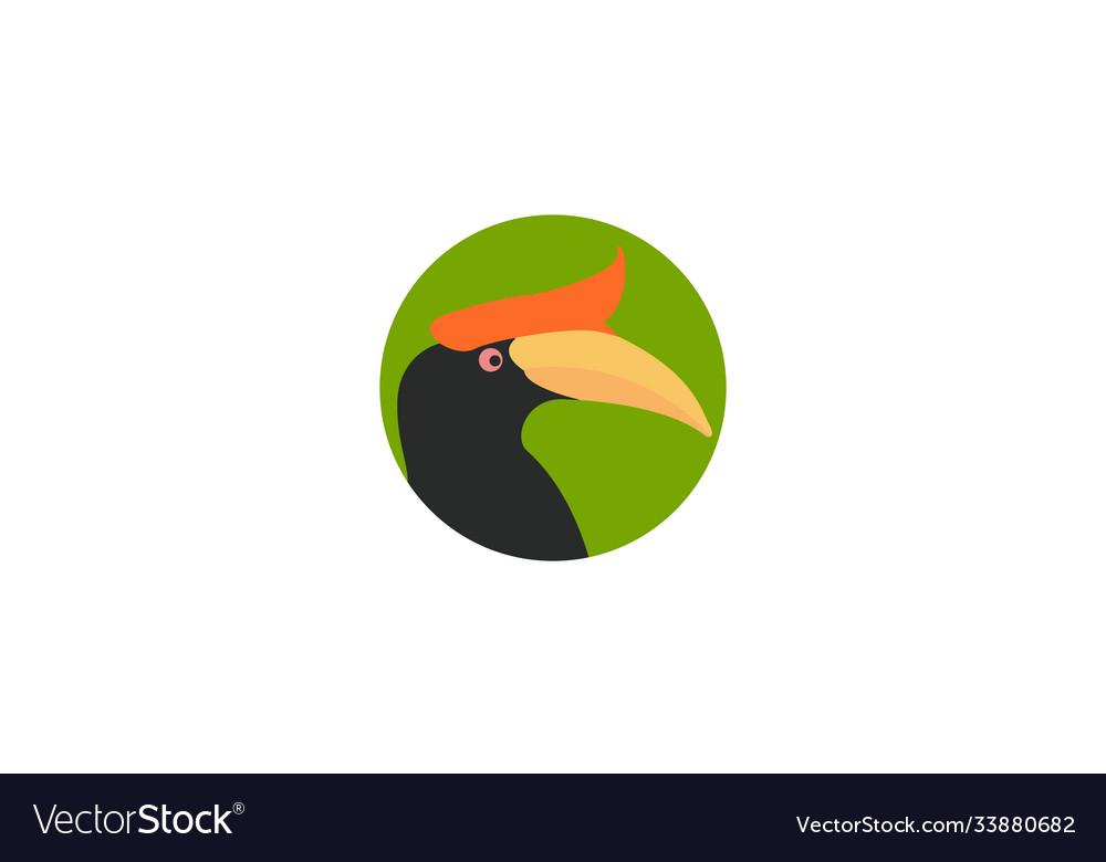 Abstract bird hornbill head colorful logo design