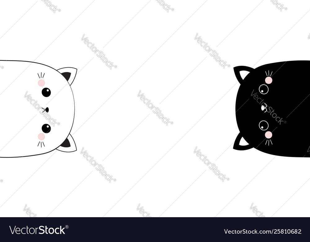 White and black cat head face line contour