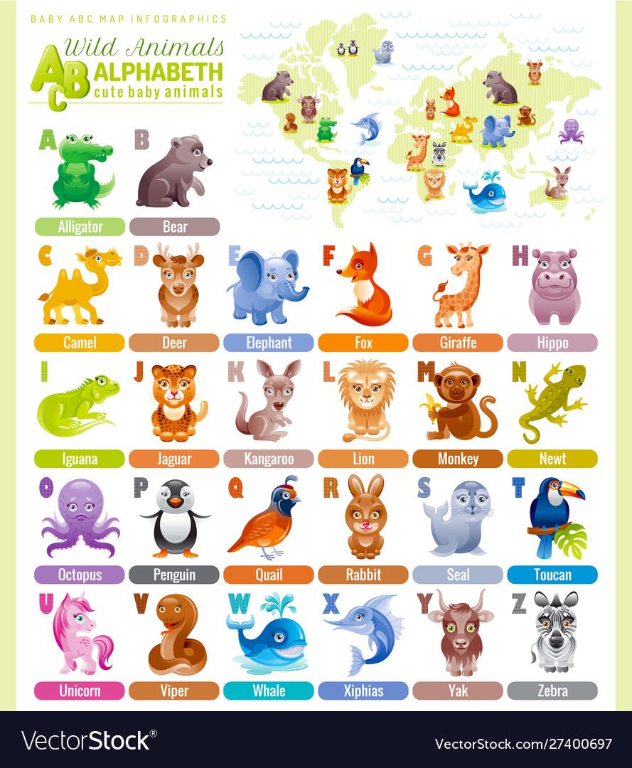 Alphabet wildlife infographics wild animal sea