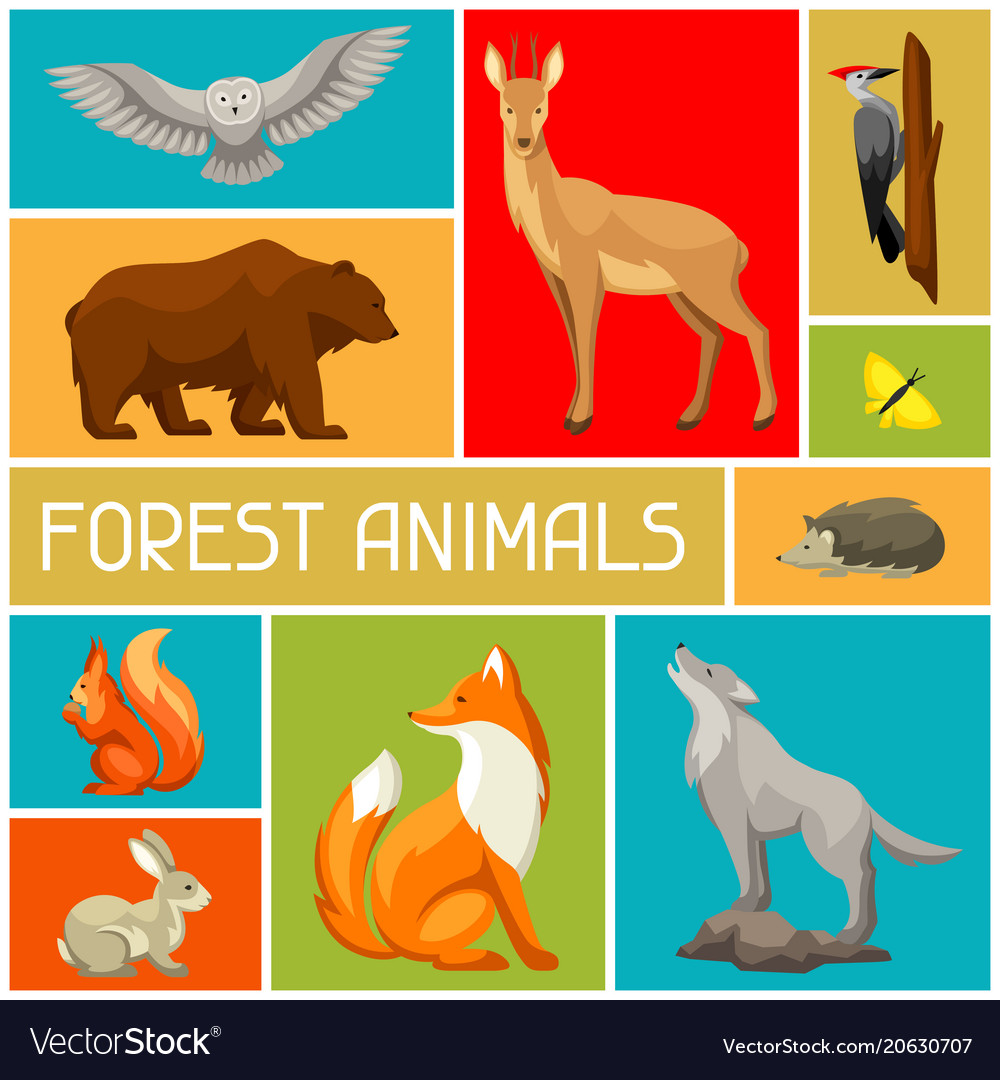 Background with woodland forest animals and birds