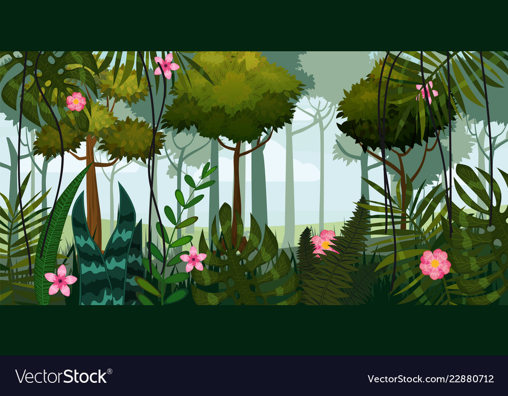 Jungle forest and flowers trees leaves flowers