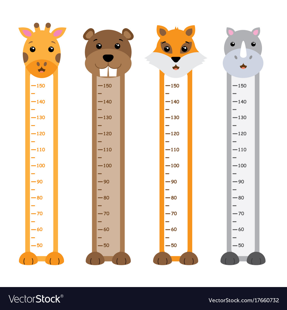 Children meter wall animals vector image