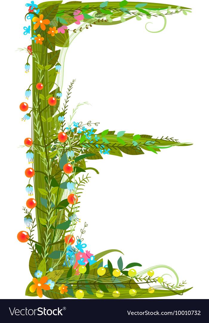 Flower blossom decorative botanical elegant