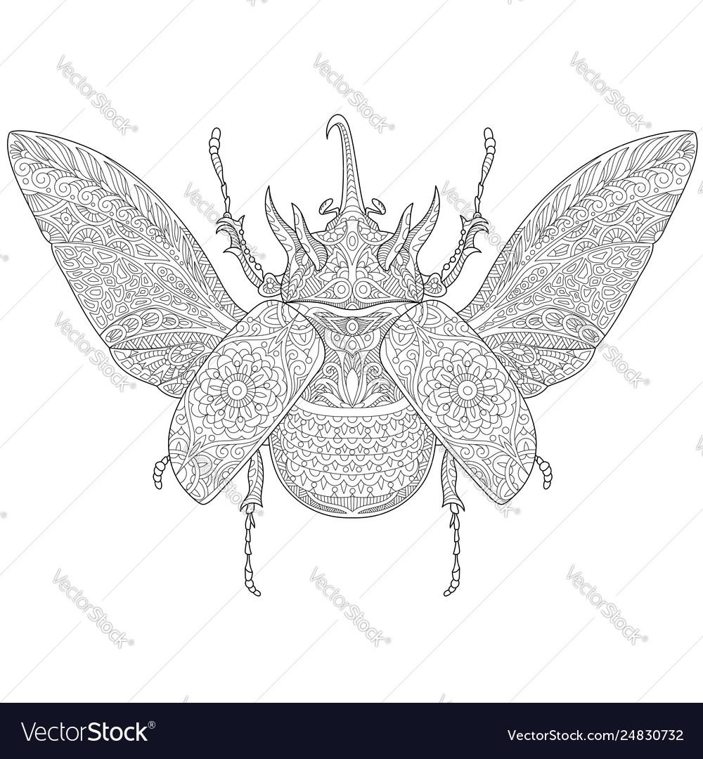 Rhinoceros beetle adult coloring page