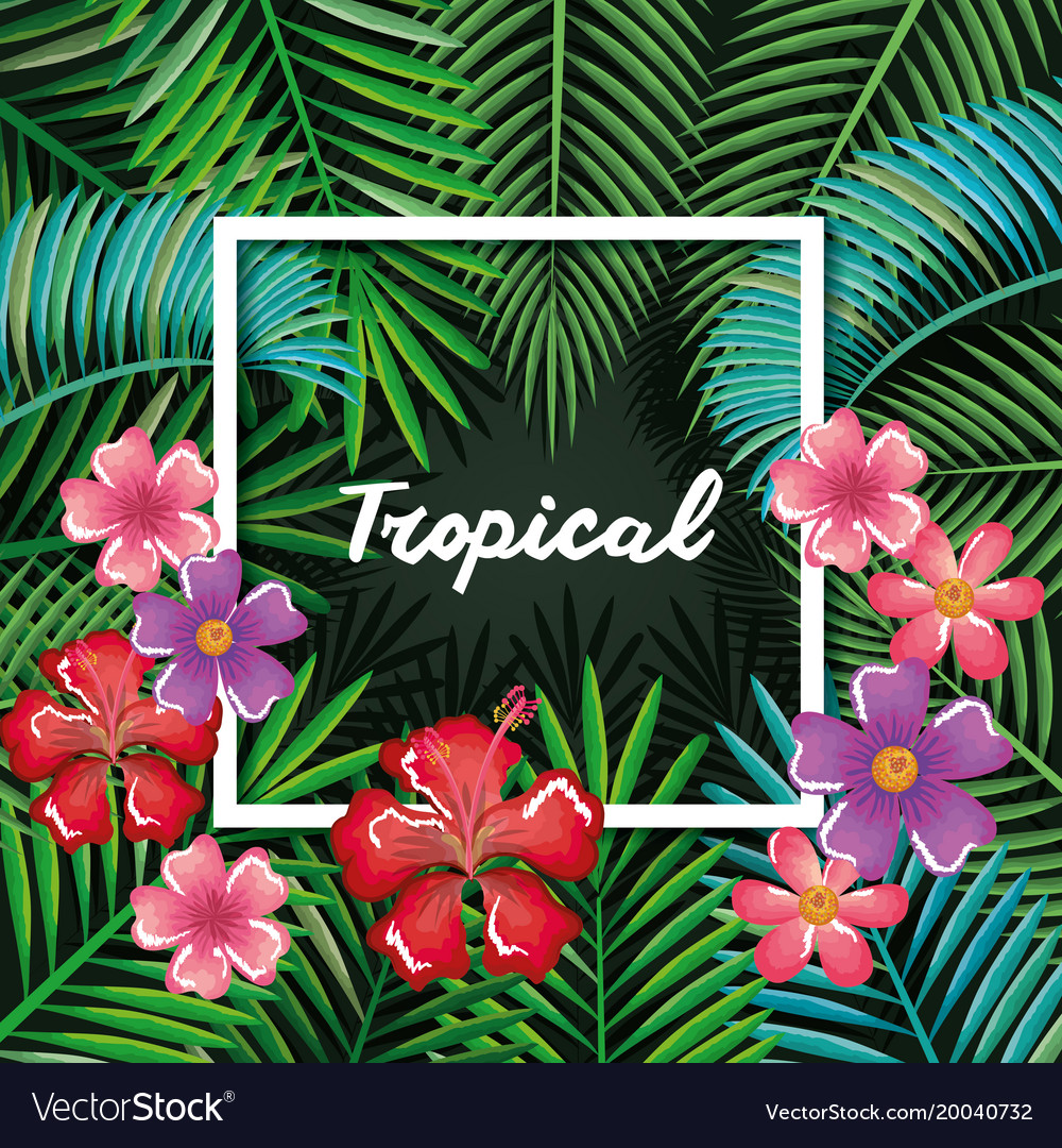 Tropical and exotics flowers and leafs