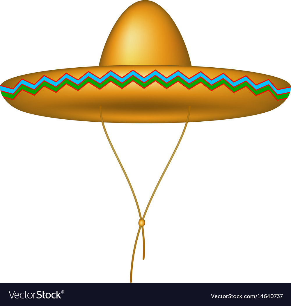 Sombrero hat in brown design vector image