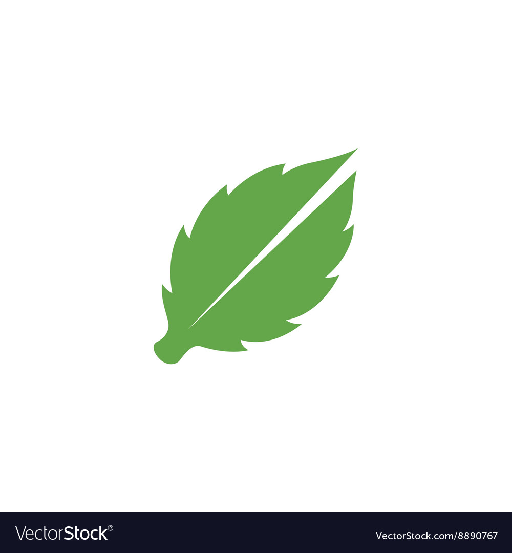 Leaves Icon logo element for template