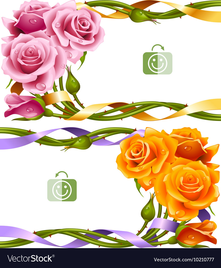 Frame Set Of Yellow And Pink Roses Royalty Free Vector Image