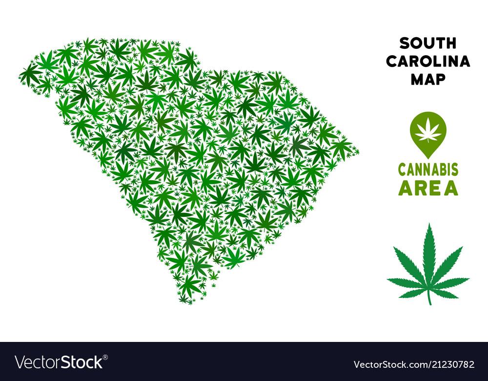 Cannabis mosaic south carolina state map Vector Image