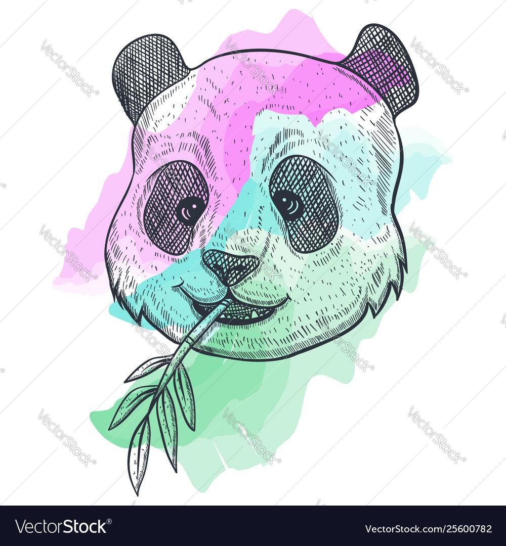 Panda bamboo watercolor