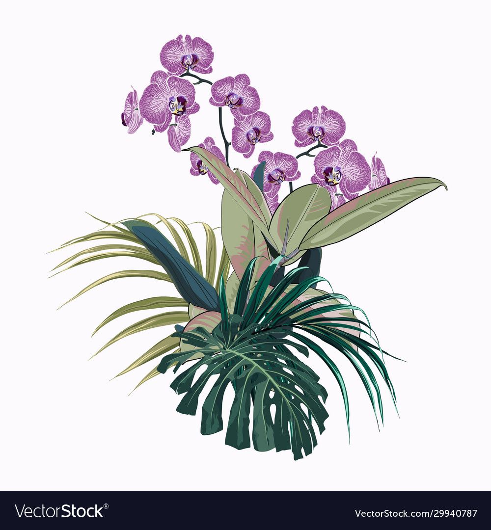 Exotic floral elements isolated