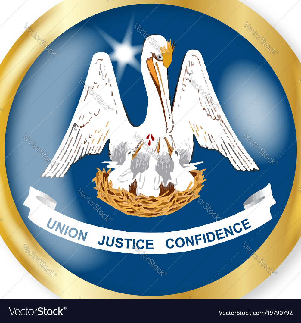 Louisiana flag button vector image