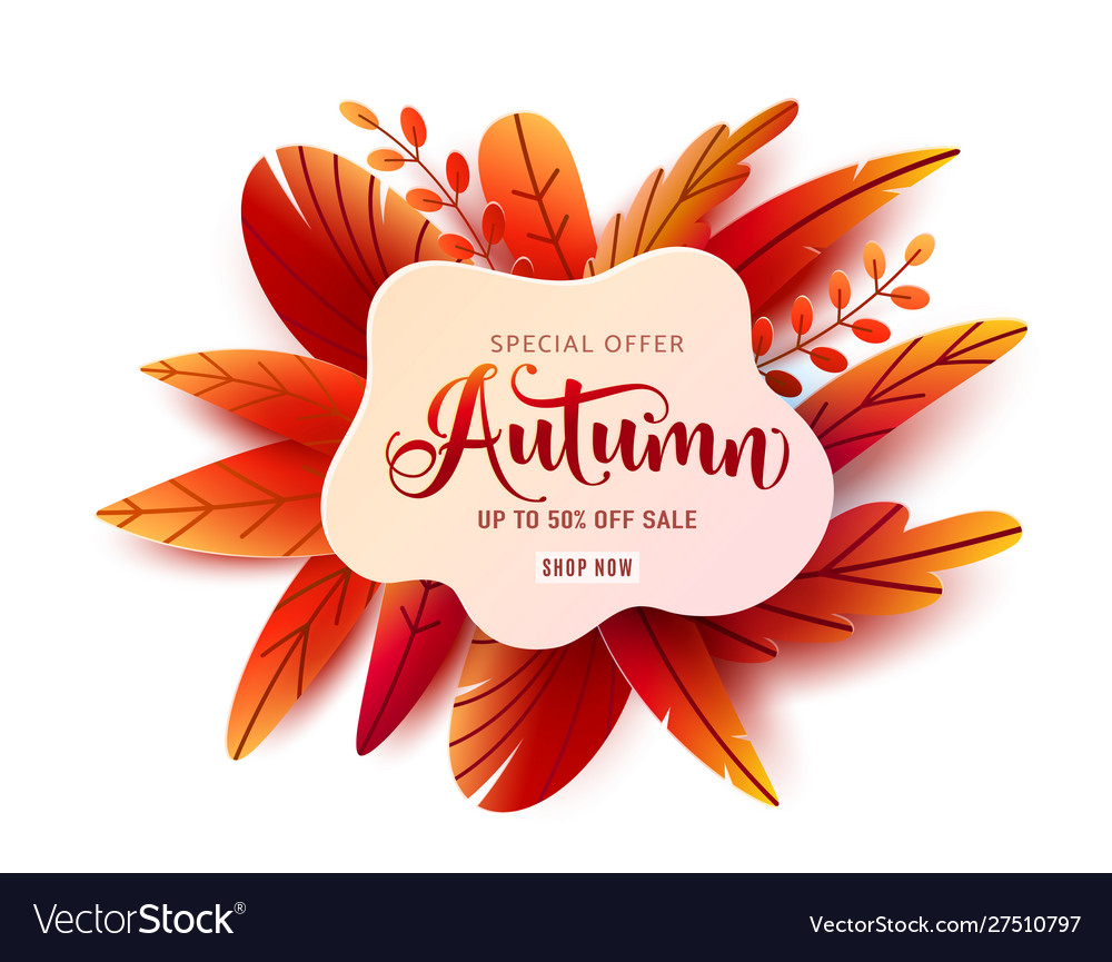 Autumn sale round banner background fall vector