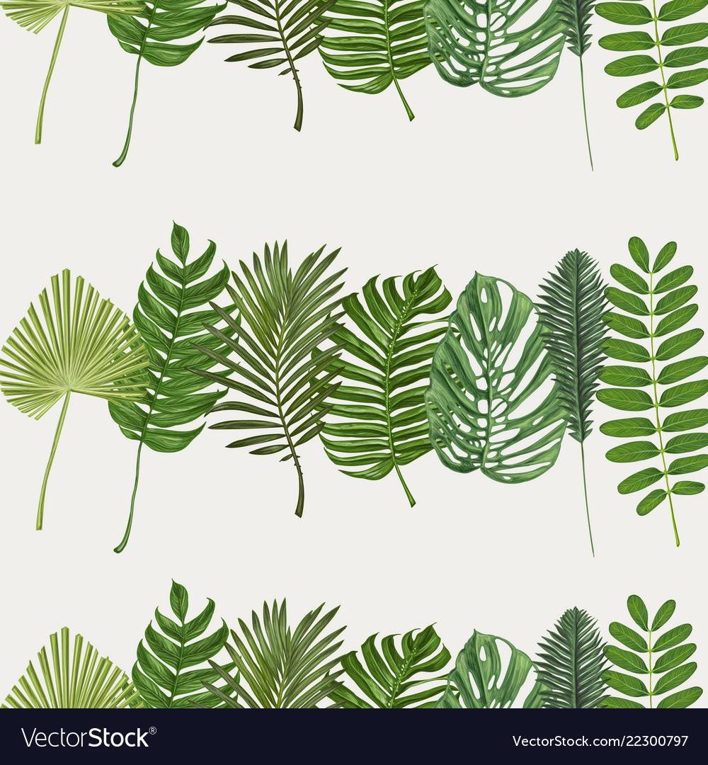 Tropical leaves botanical