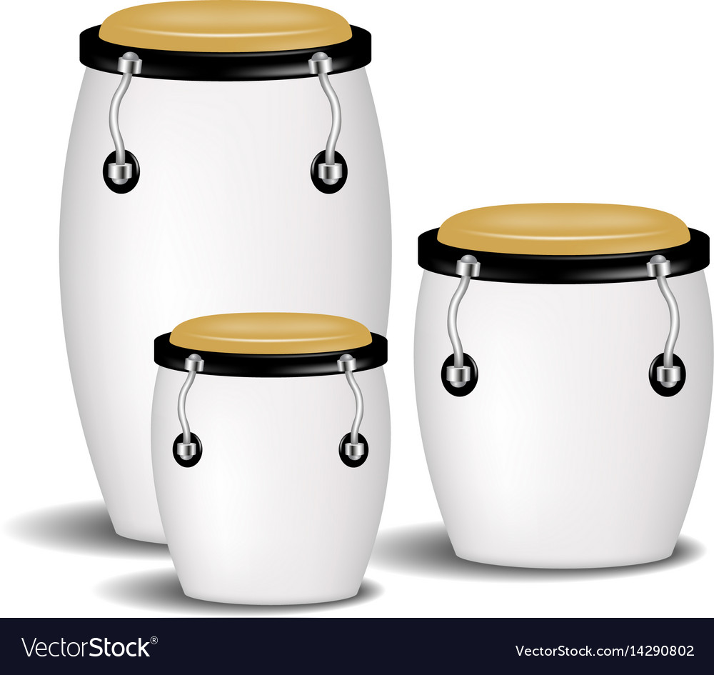 Congas band in white design with shadow vector image