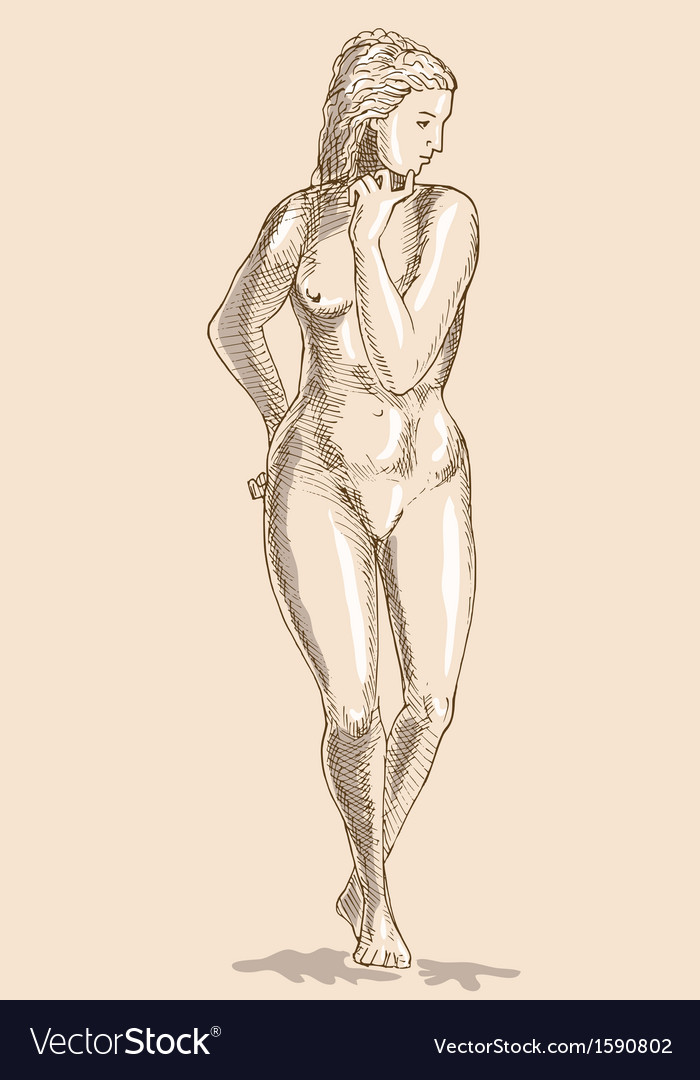 Drawing Of The Female Human Anatomy Figure Vector Image