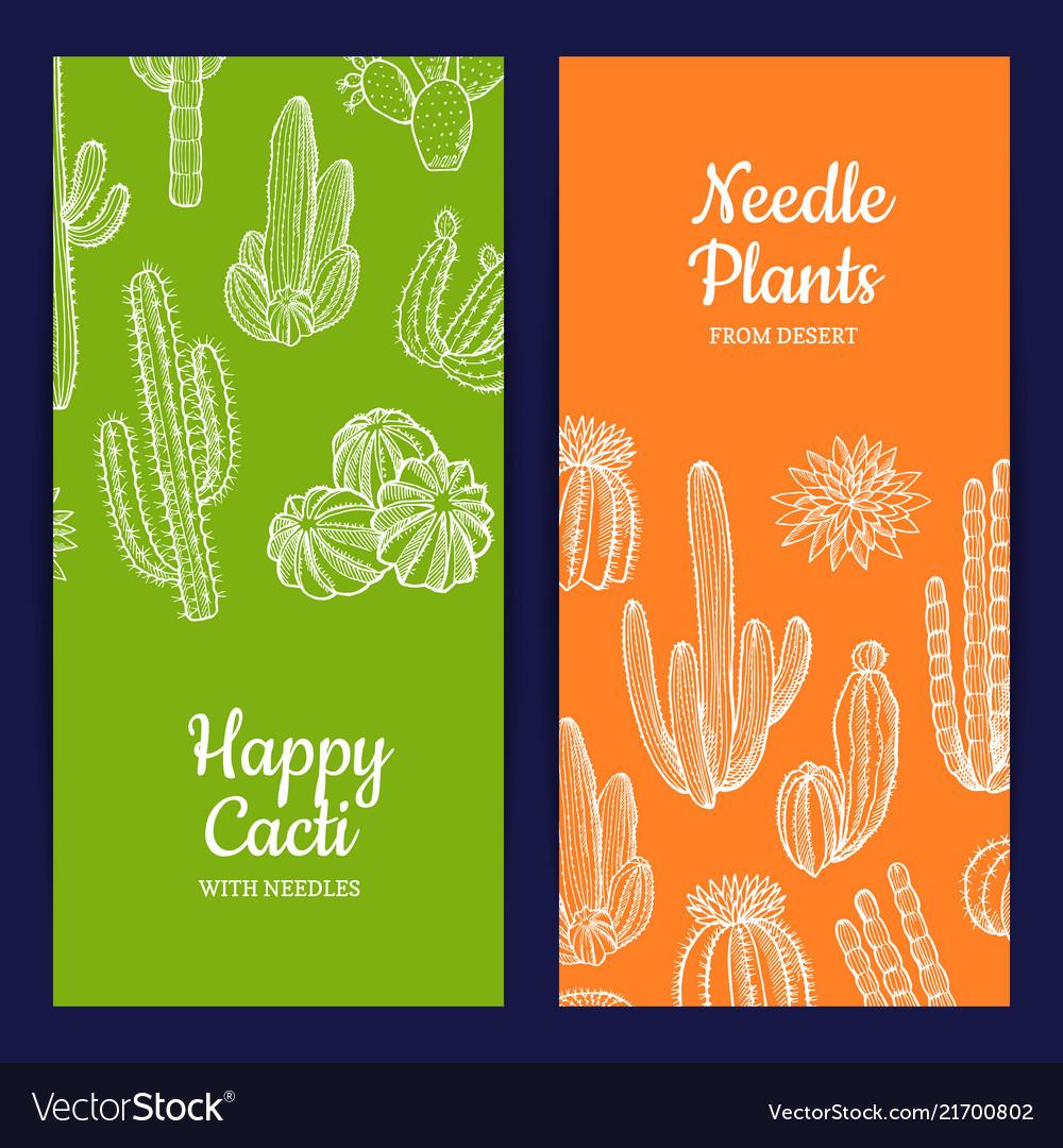 Hand drawn cacti plants web banner