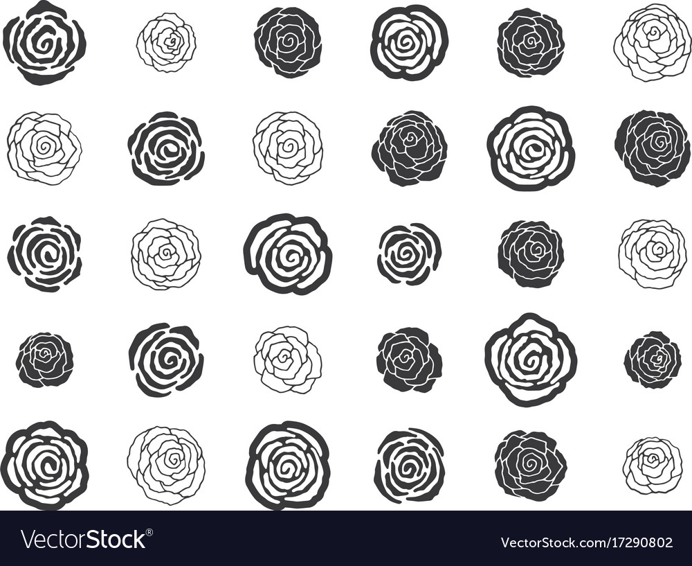 Hand drawn floral decorative design elements vector image