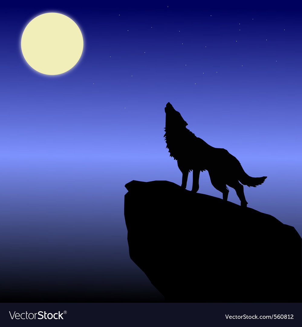 Wolf howls vector image