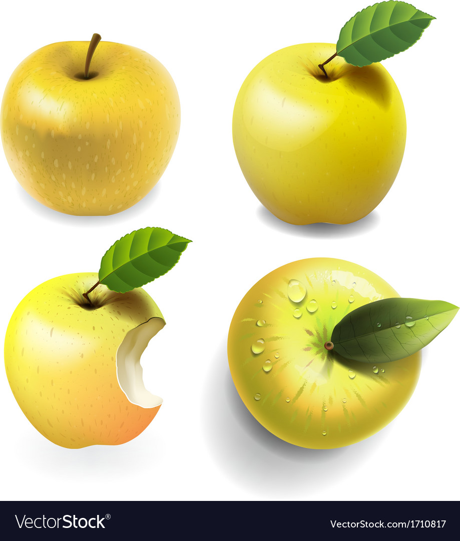 Set of yellow ripe Apples four various view