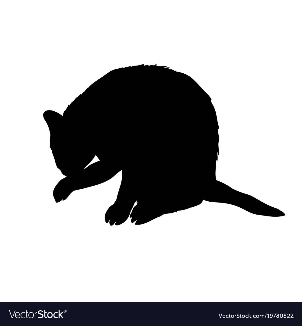 Black silhouette of cat sitting sideways isolated