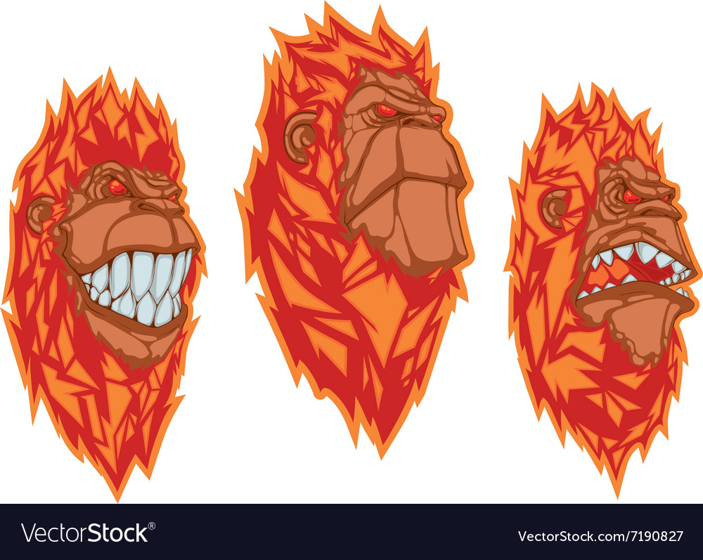 Burning monkey heads Sticker concept