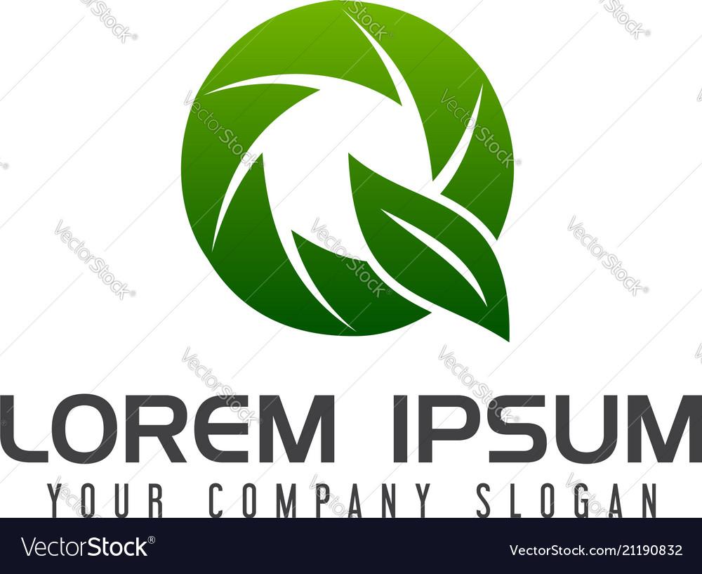 Letter q leaf logo design concept template