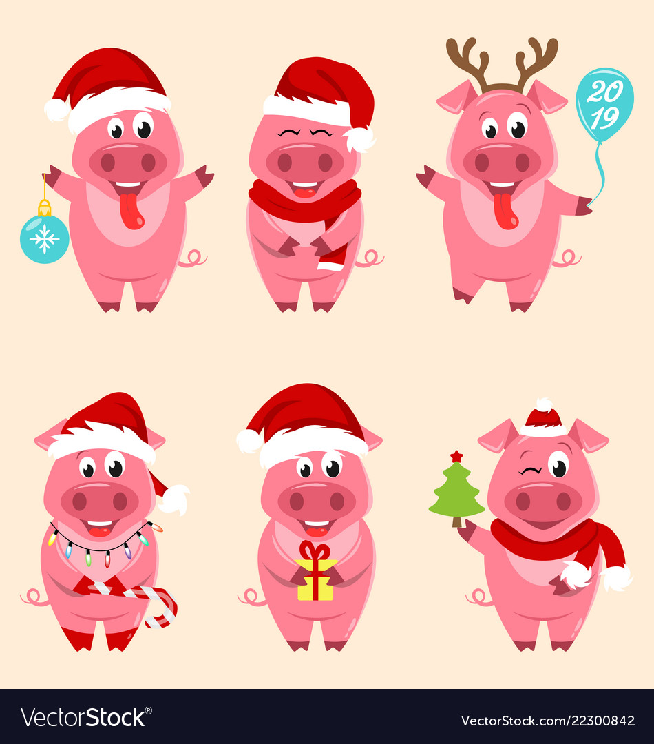 Christmas Pigs.Christmas Cartoon Pigs Portrait In Santa S Hat And