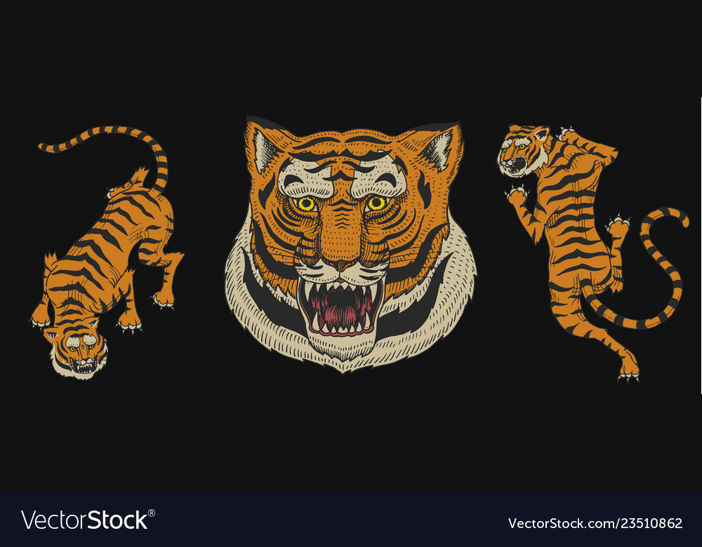 Asian tigers in vintage japanese style for logo