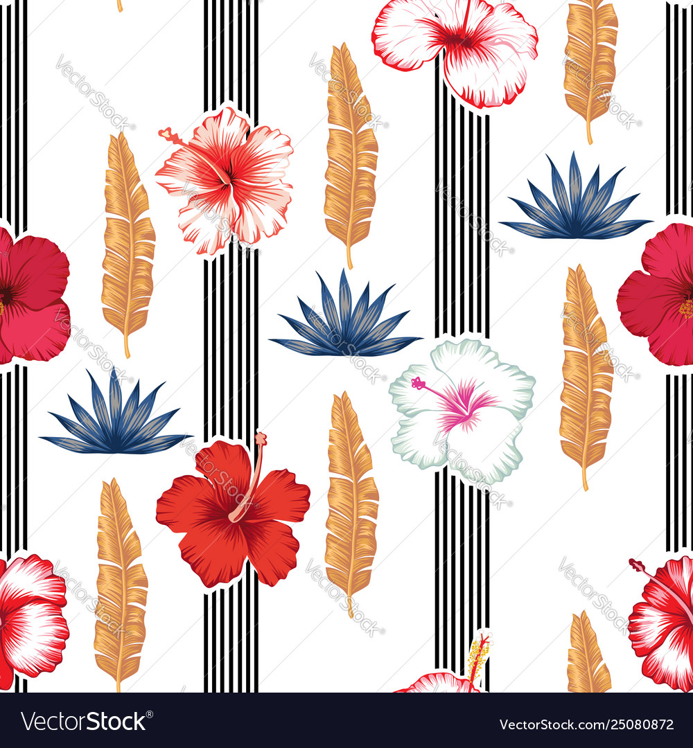 Geometric black lines with hibiscus flowers vector