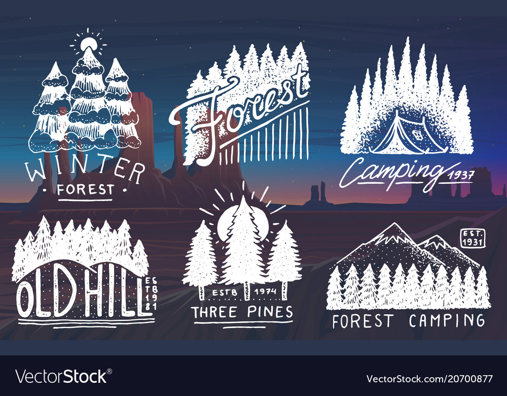 Camping badges mountains coniferous forest and