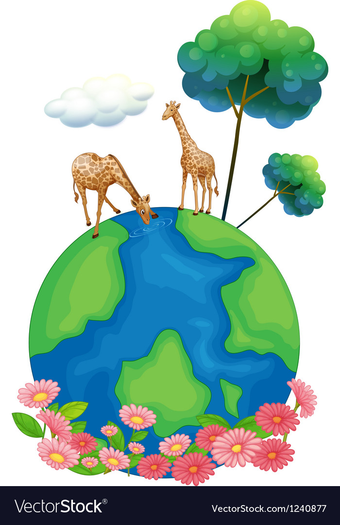 Two giraffes above the earth vector image
