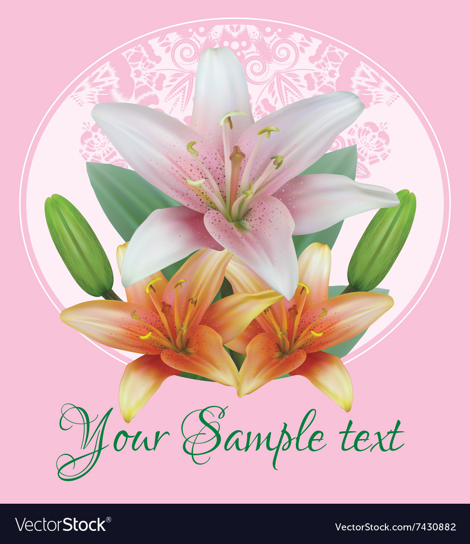 Greeting card with bouquet flowers of lilies vector image izmirmasajfo