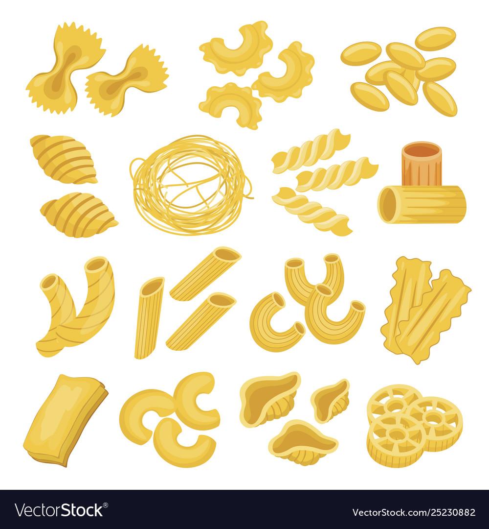 Pasta types set italian noodles and macaroni
