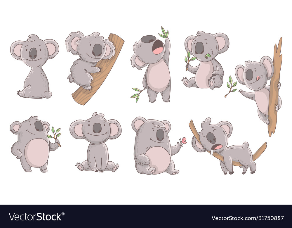Collection cute koala in different poses hand