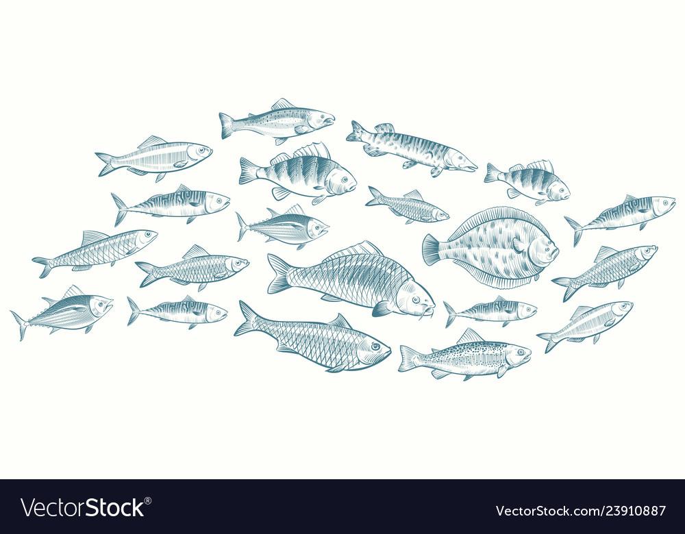 Hand sketched fish underwater
