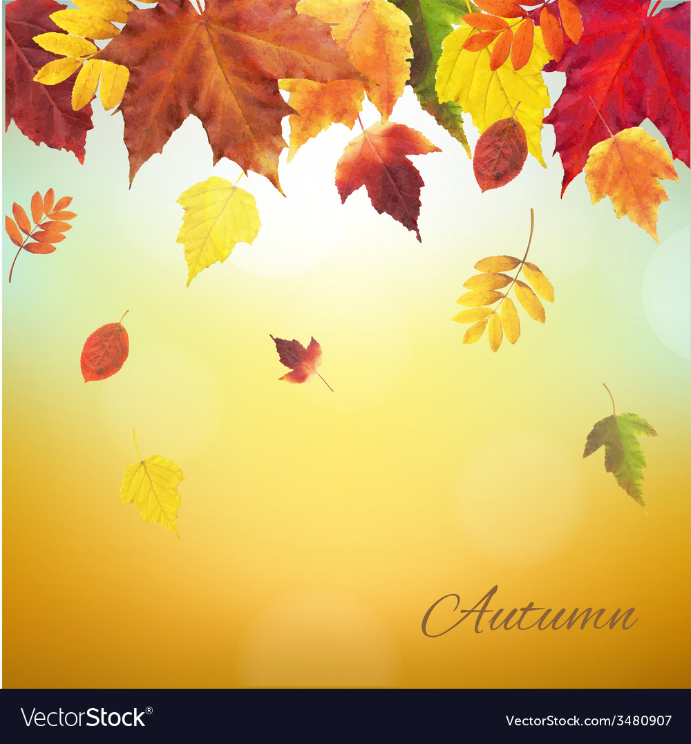 Autumn Vintage Border