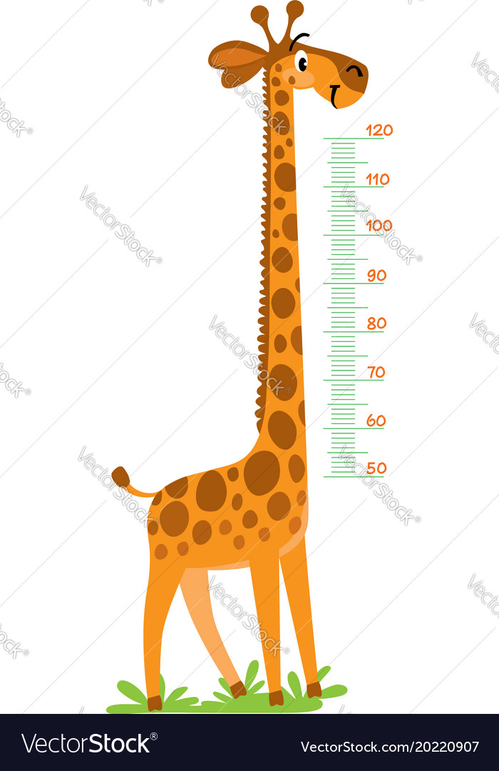 charts and diagrams of giraffes