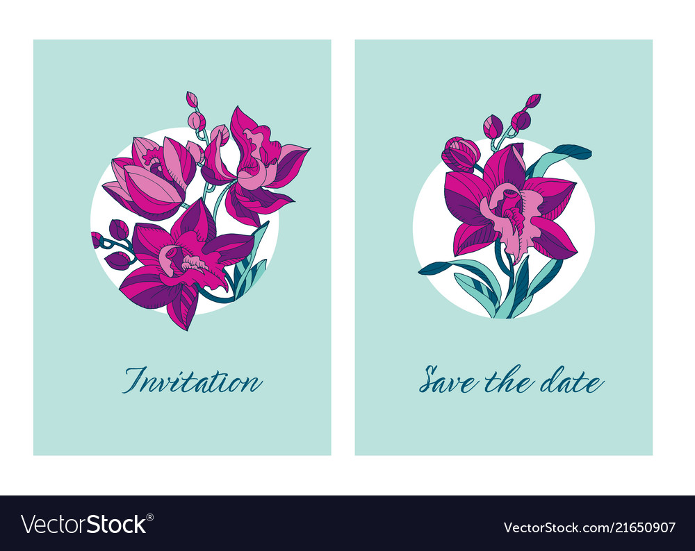 Sketch Style Line Art Pink Orchid Flowers Vector Image
