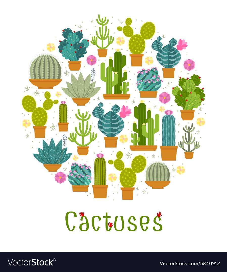 Cactus label vector image