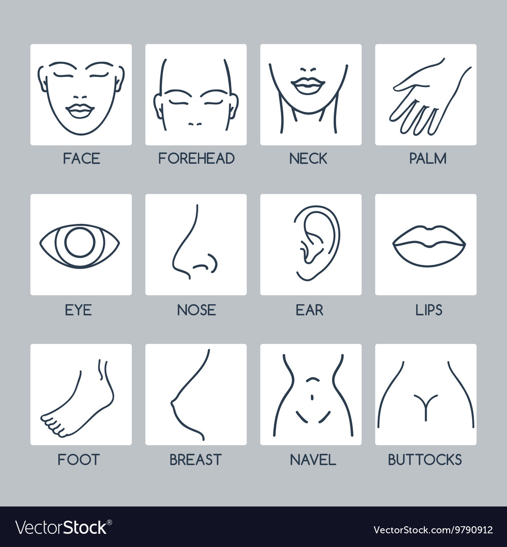 Parts of human body icons