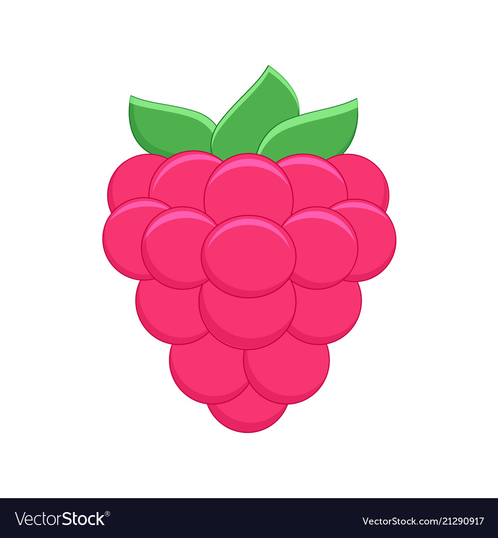 Cartoon raspberry isolated