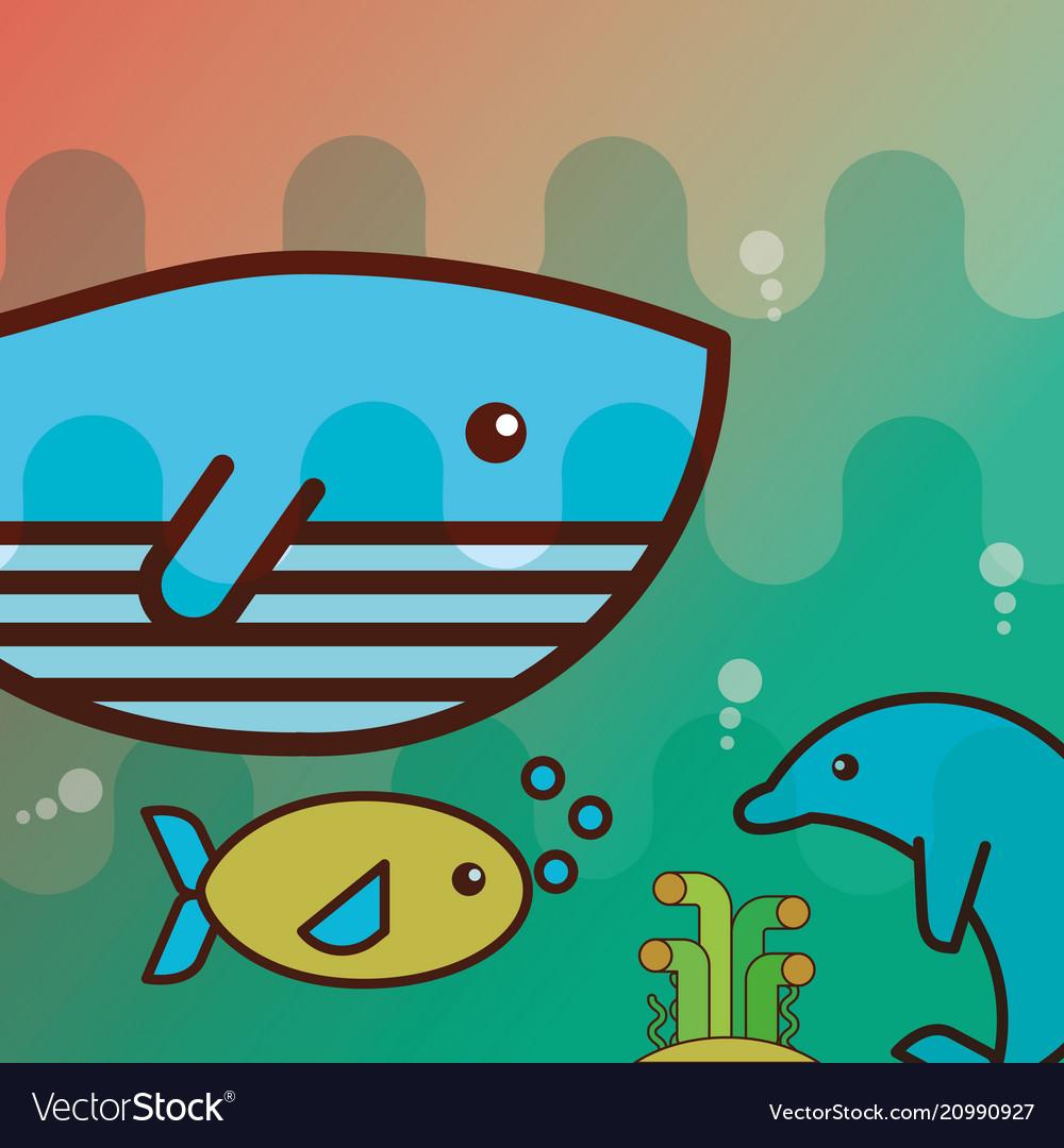 Whale dolphin fish sea life cartoon vector image