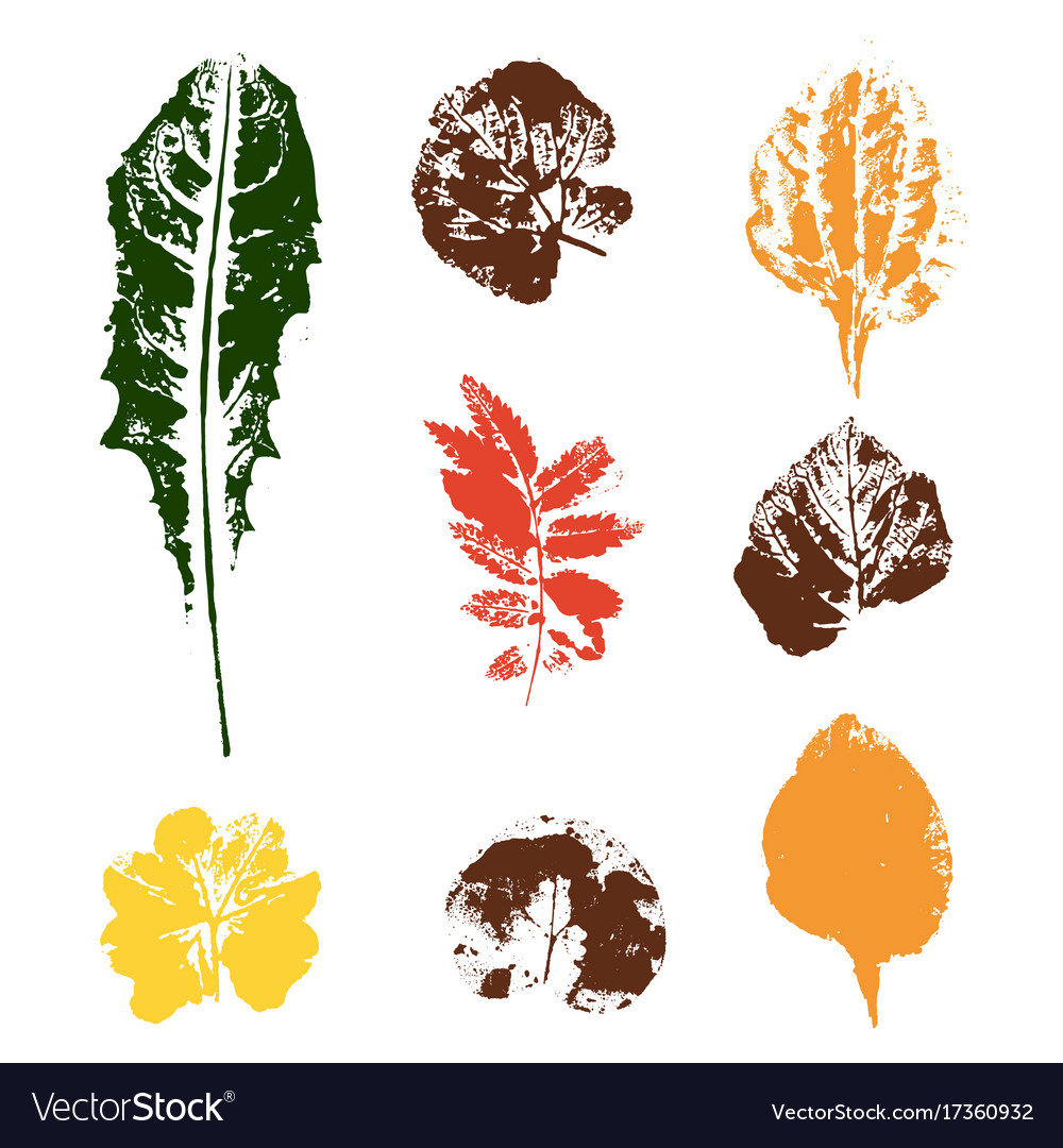 Colored leaves stamps