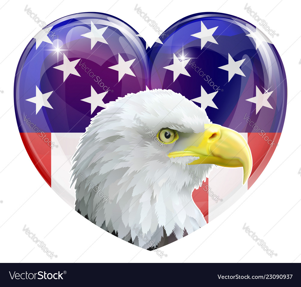 American flag eagle love heart
